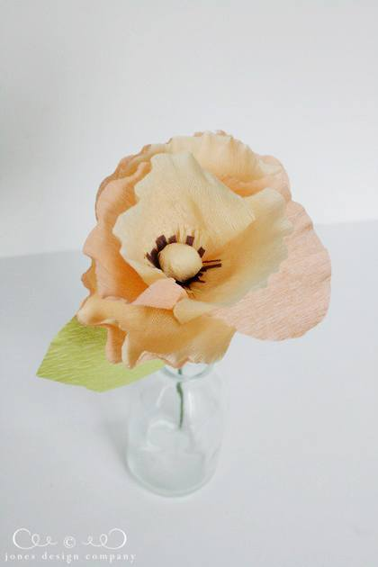 orange-crepe-paper-poppy