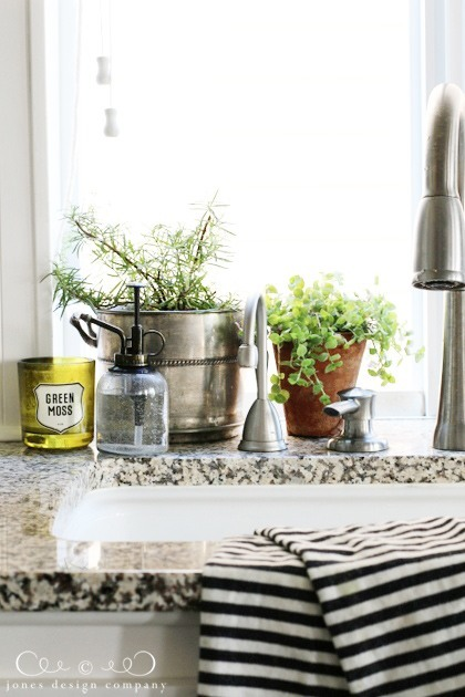 Add potted herbs to your kitchen to bring life into your home / jones  design company